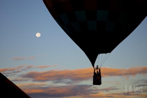 Balloons  201