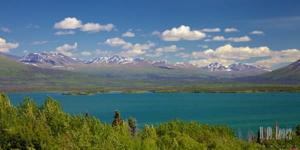 Haines Junction010