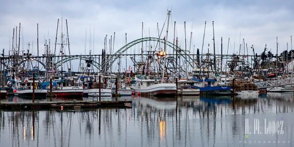 Newport-207